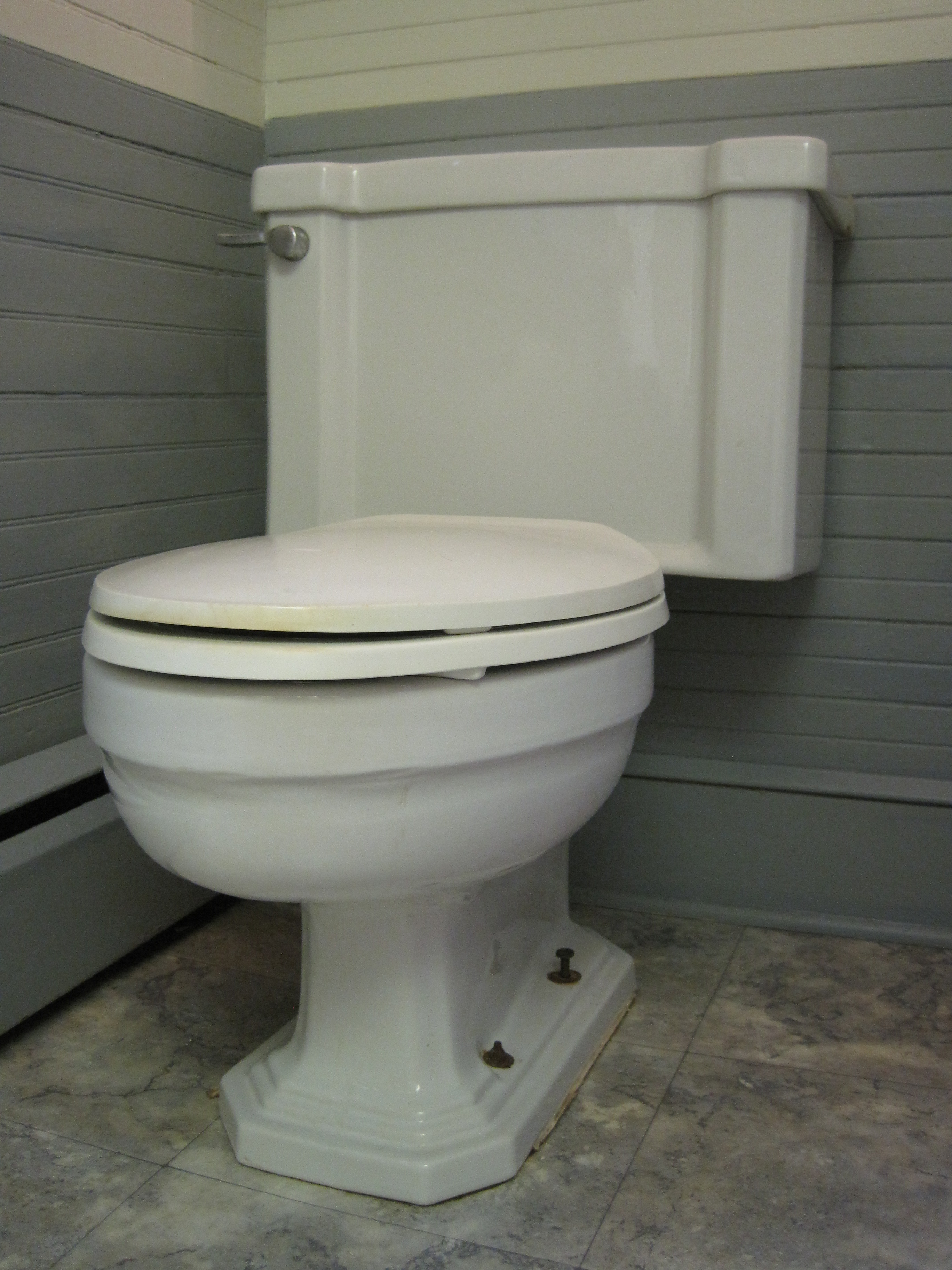 Are Toto Toilets Worth It.TOTO Ultramax II Review: Is It Worth ...
