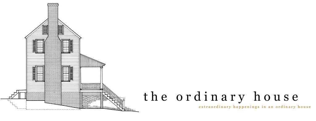 The Ordinary House